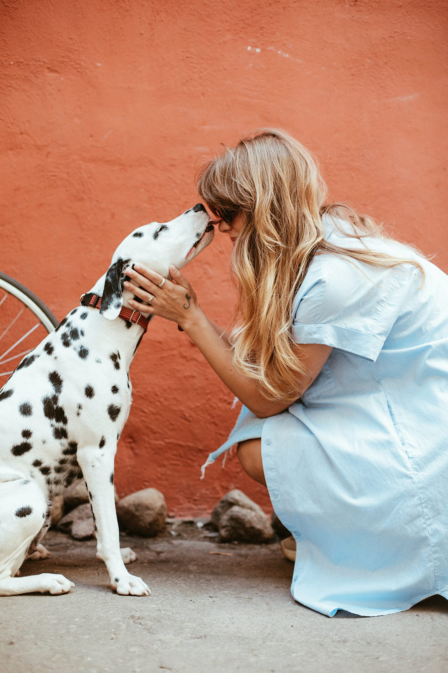 Lady with dalmation