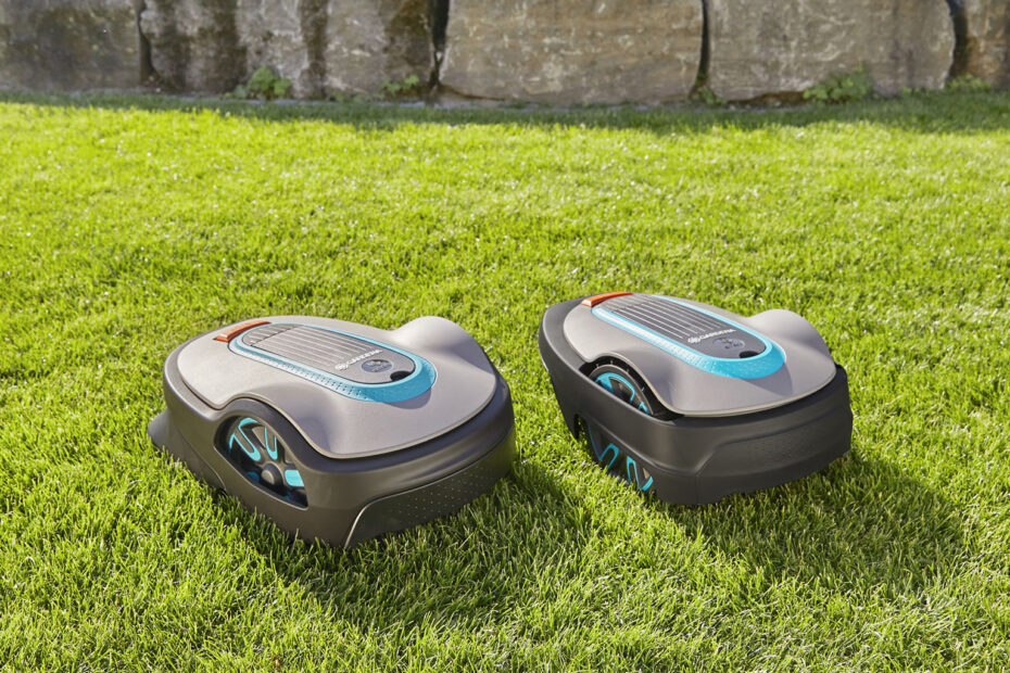 Robotic Lawn Mower and friend on the lawn.